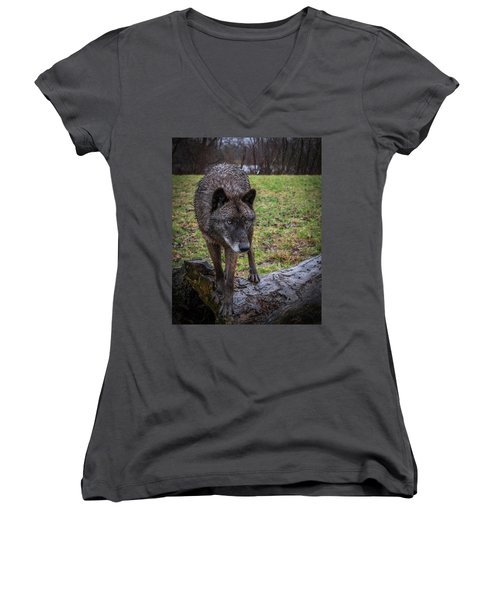 This Is My Log Women's V-Neck