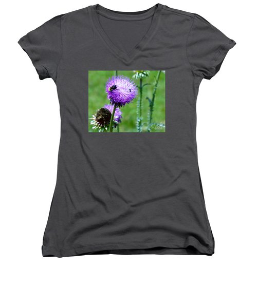 Thistle Visitors Women's V-Neck