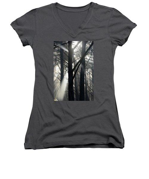 Trees And Fog Women's V-Neck