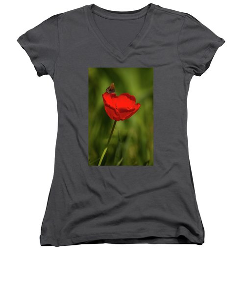 Tulip And Skipper Women's V-Neck