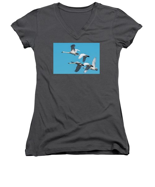 Tundra Swans In Flight Women's V-Neck