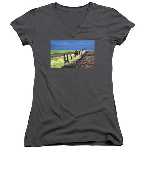 Two Horses In The Palouse Women's V-Neck
