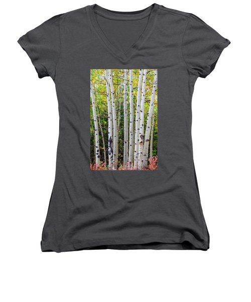 Women's V-Neck featuring the photograph White Bark Golden Forest by James BO Insogna