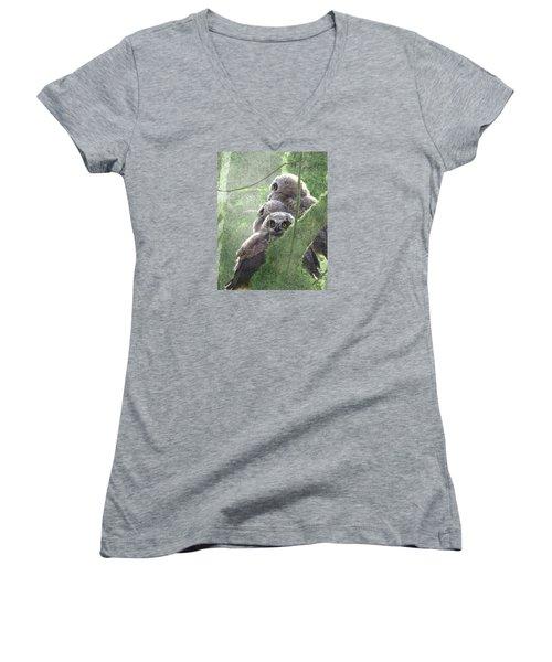 Harbingers Of Spring Women's V-Neck T-Shirt