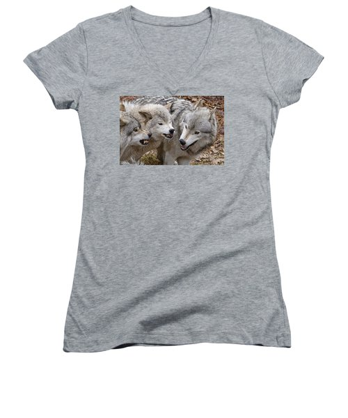 Women's V-Neck T-Shirt (Junior Cut) featuring the photograph  Alpha Displeasure 2 by Wolves Only