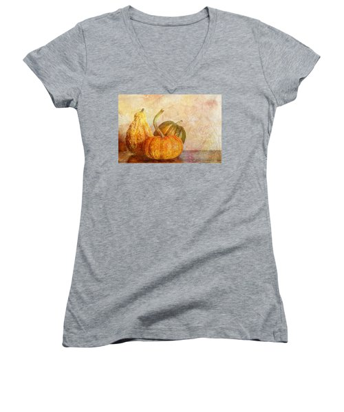Gourd And Pumpkins II Women's V-Neck T-Shirt (Junior Cut) by Heidi Smith
