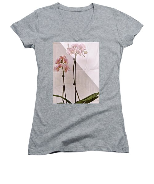 Women's V-Neck T-Shirt (Junior Cut) featuring the photograph  Orchids In The Window by Ira Shander
