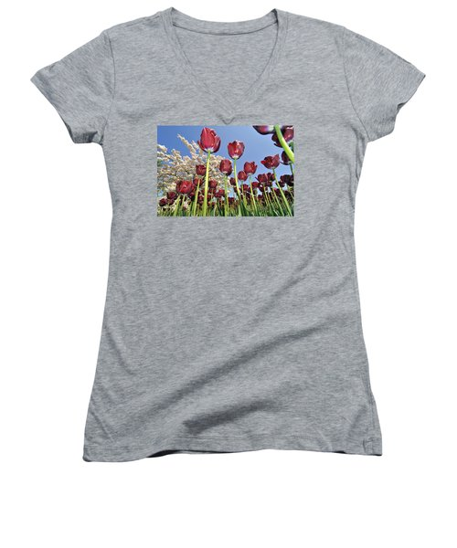Women's V-Neck T-Shirt (Junior Cut) featuring the photograph 090416p029 by Arterra Picture Library