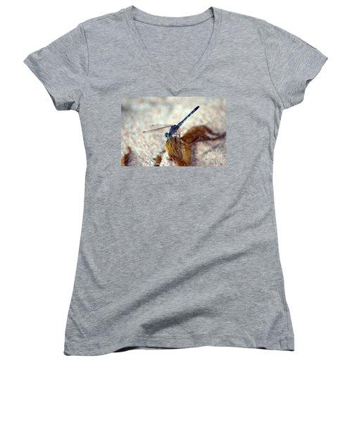 Blue Dragonfly Women's V-Neck T-Shirt