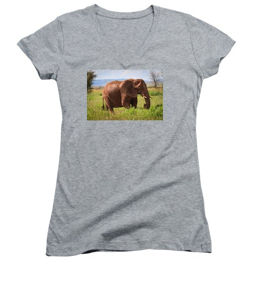African Desert Elephant Women's V-Neck (Athletic Fit)