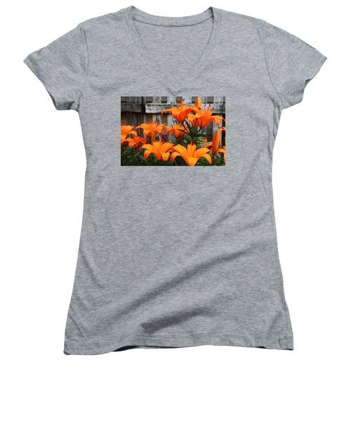 Afternoon Delight Women's V-Neck T-Shirt (Junior Cut) by Bruce Bley