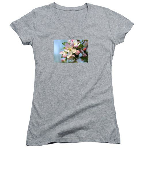 Apple Blossom Women's V-Neck T-Shirt (Junior Cut) by Kristin Elmquist