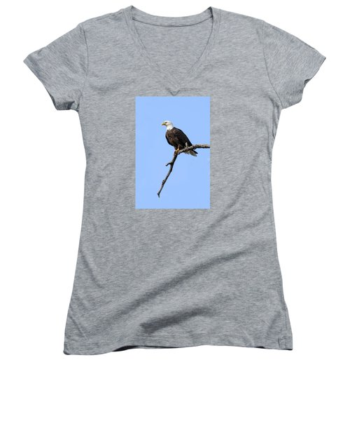 Bald Eagle 6 Women's V-Neck T-Shirt (Junior Cut) by David Lester
