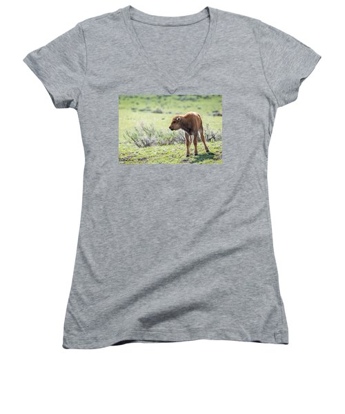 Bison Calf Women's V-Neck