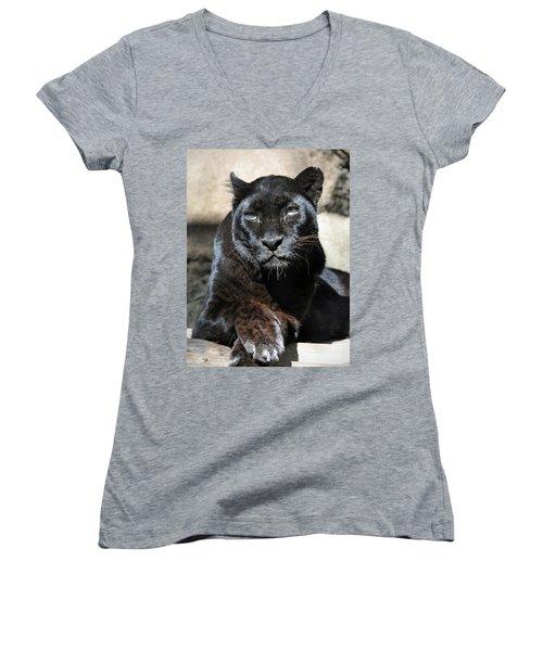 Black Leopard Women's V-Neck T-Shirt (Junior Cut) by Savannah Gibbs