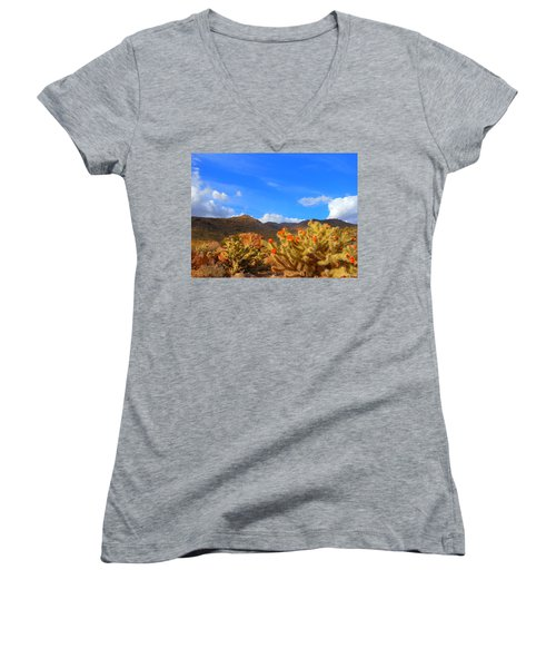 Cactus In Spring Women's V-Neck (Athletic Fit)