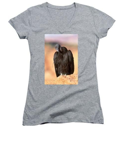 California Condor Women's V-Neck T-Shirt (Junior Cut)