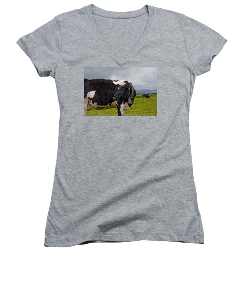 Cow Wearing Cowbell  Women's V-Neck (Athletic Fit)