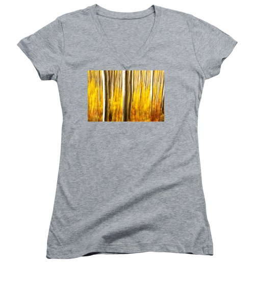 Fall Abstract Women's V-Neck