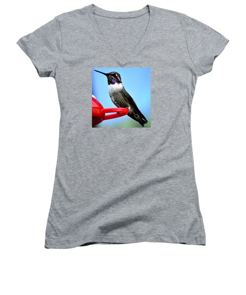 Women's V-Neck T-Shirt (Junior Cut) featuring the photograph Male Anna On Perch by Jay Milo