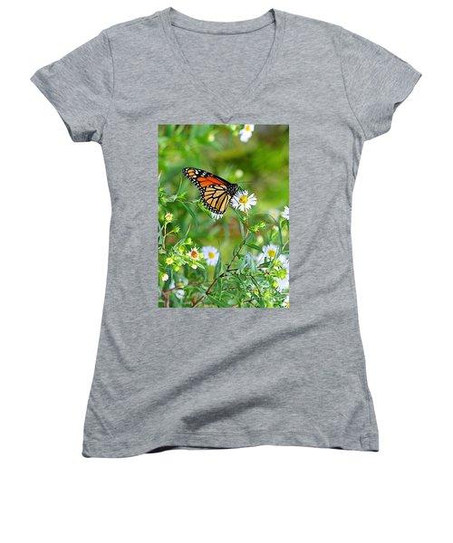 Women's V-Neck T-Shirt (Junior Cut) featuring the photograph Gods Creation-17 by Robert Pearson