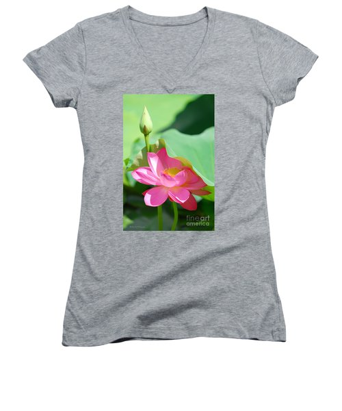 D48l-96 Water Lily At Goodale Park Photo Women's V-Neck