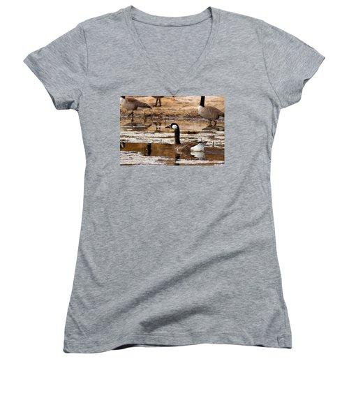 Goose Pond Women's V-Neck T-Shirt