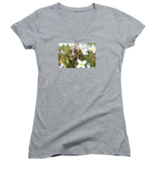 Honeybee On Bluet Women's V-Neck T-Shirt (Junior Cut) by Lucinda VanVleck