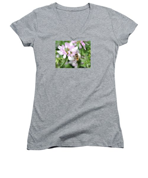 Honeybee On Crown Vetch Women's V-Neck T-Shirt (Junior Cut) by Lucinda VanVleck