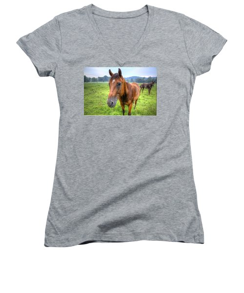 Horses In A Field Women's V-Neck T-Shirt