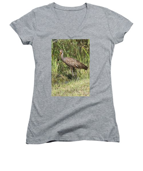 Women's V-Neck T-Shirt (Junior Cut) featuring the photograph Limpkin In The Glades by Christiane Schulze Art And Photography