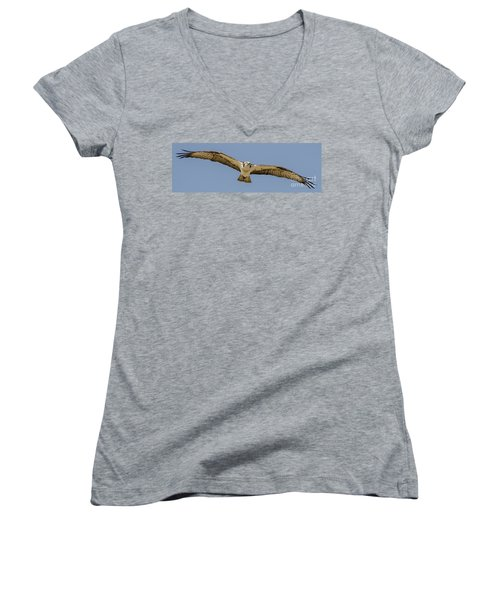 Women's V-Neck T-Shirt (Junior Cut) featuring the photograph Osprey In Flight by Dale Powell