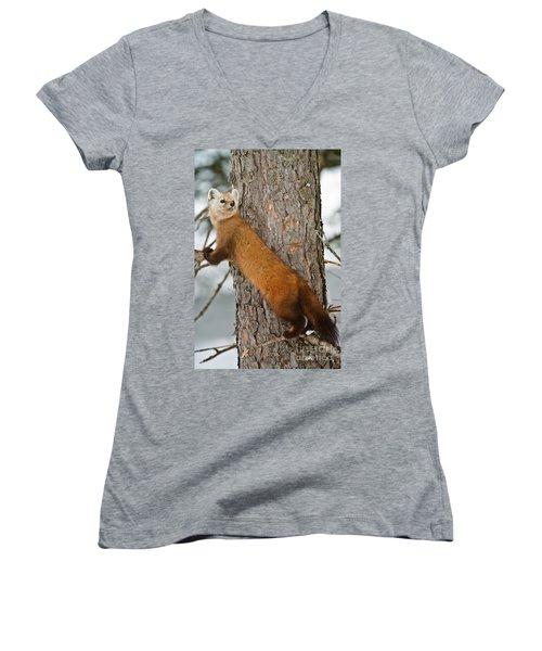 Pine Marten Women's V-Neck