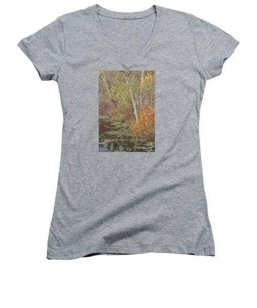 Pondside Pastel Women's V-Neck T-Shirt (Junior Cut) by Ann Horn