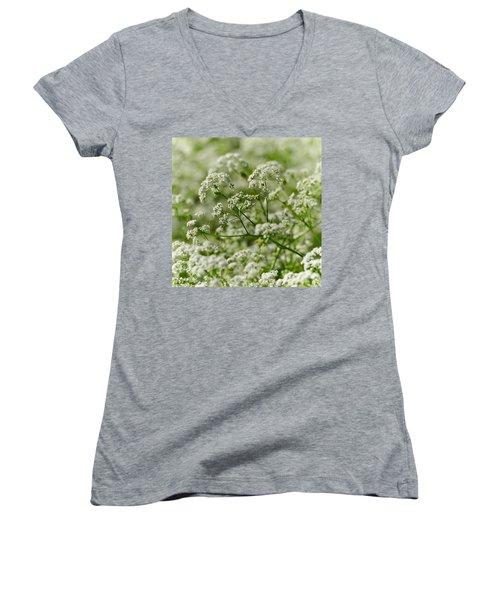 Queen Annes Lace Women's V-Neck T-Shirt
