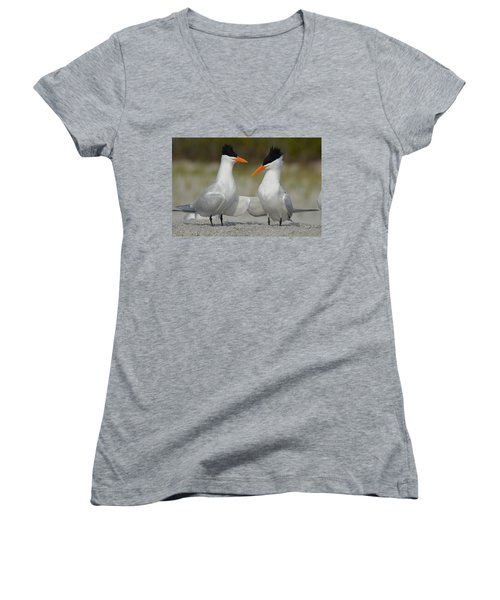 Royal Terns Women's V-Neck (Athletic Fit)