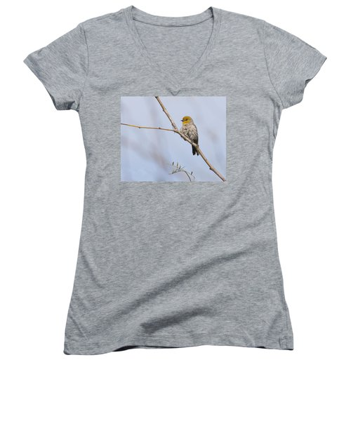 Verdin Women's V-Neck T-Shirt (Junior Cut) by Tam Ryan