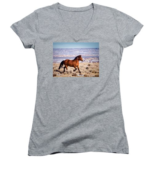 Eagle - Wild Horse Stallion Women's V-Neck
