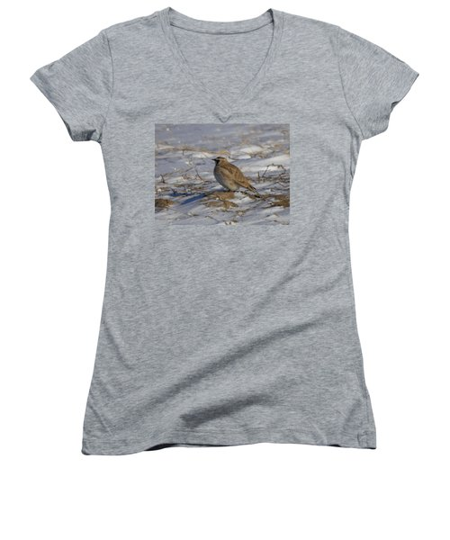 Winter Bird Women's V-Neck T-Shirt