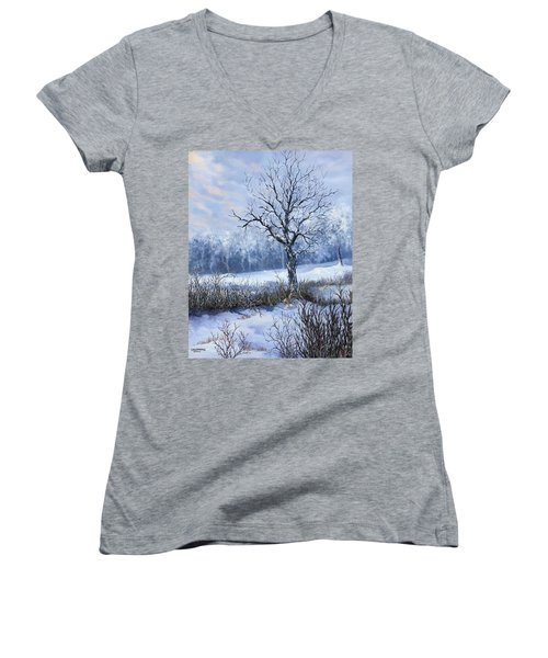 Winter Slumber Women's V-Neck T-Shirt (Junior Cut)