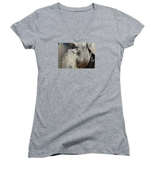 Wise One,elephant  Women's V-Neck (Athletic Fit)