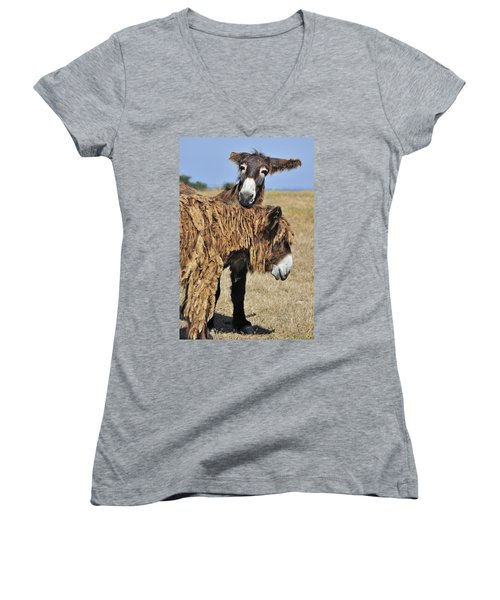 Women's V-Neck T-Shirt (Junior Cut) featuring the photograph 120920p028 by Arterra Picture Library