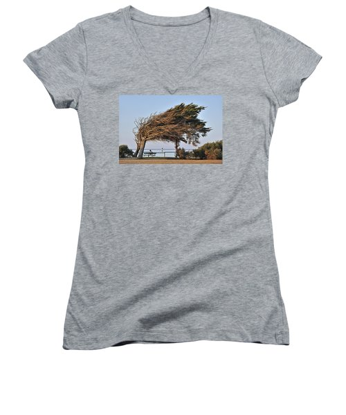 Women's V-Neck T-Shirt (Junior Cut) featuring the photograph 120920p152 by Arterra Picture Library