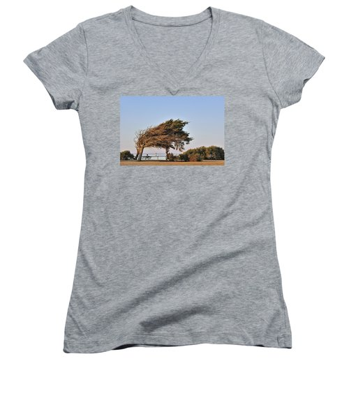 Women's V-Neck T-Shirt (Junior Cut) featuring the photograph 120920p153 by Arterra Picture Library