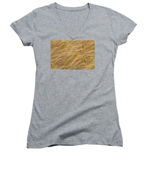 Women's V-Neck T-Shirt (Junior Cut) featuring the photograph 130109p155 by Arterra Picture Library