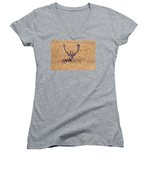 Women's V-Neck T-Shirt (Junior Cut) featuring the photograph 130201p293 by Arterra Picture Library