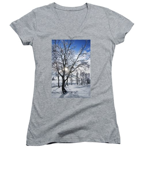 Women's V-Neck T-Shirt (Junior Cut) featuring the photograph 130201p341 by Arterra Picture Library