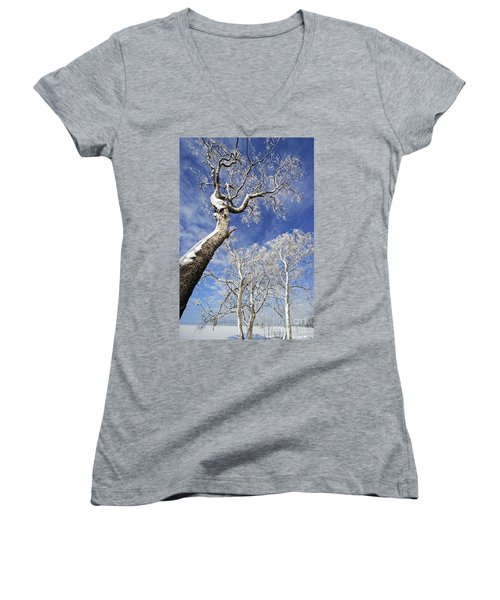 Women's V-Neck T-Shirt (Junior Cut) featuring the photograph 130201p343 by Arterra Picture Library
