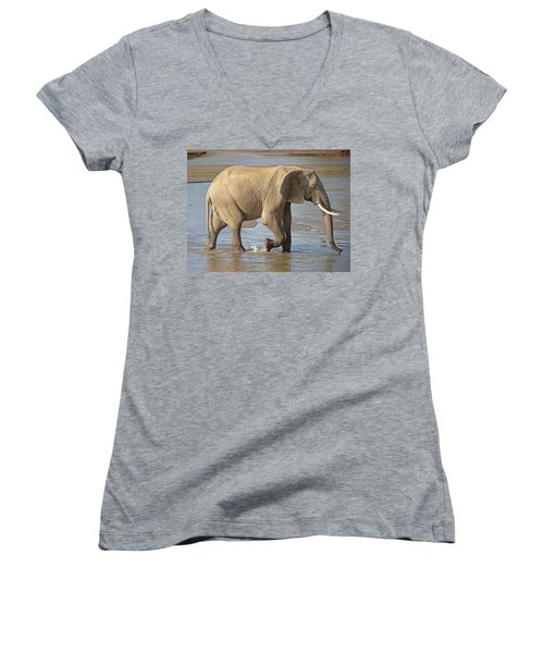 African Elephant Women's V-Neck (Athletic Fit)