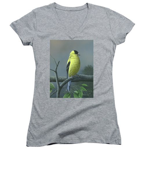 American Goldfinch Women's V-Neck T-Shirt (Junior Cut) by Mike Brown
